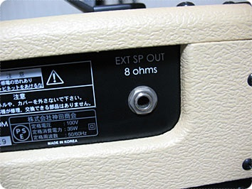 GVA Customの8Ωのスピーカーアウト